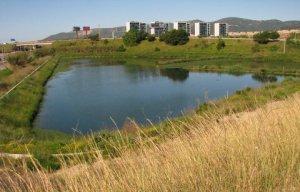Basa de laminació de Viladecans, al costat de l'Outlet (Santi Regas)