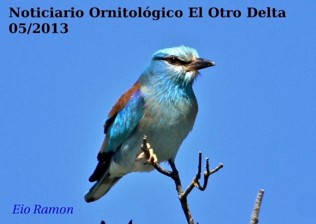 NoticiarioMayo13