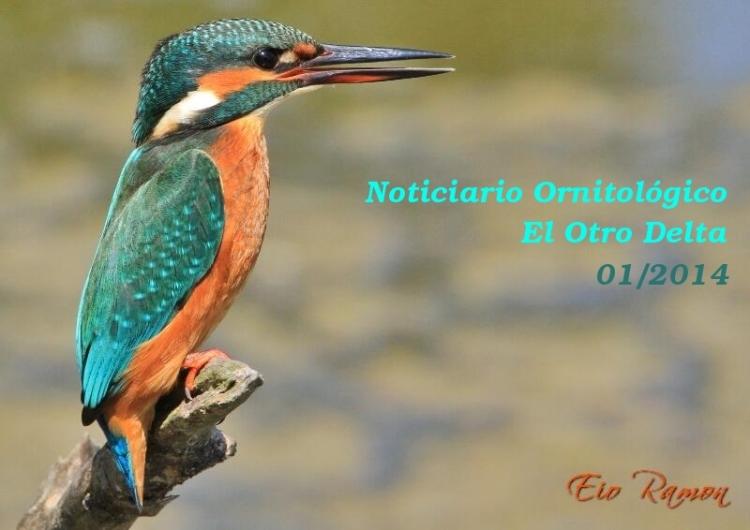 NoticiarioEne14