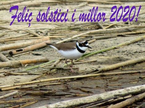 Felicitacions de S.O.S. Delta del Llobregat2020